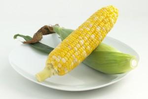 野菜としてのスイートコーン