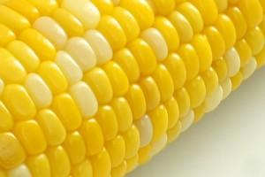 小麦アレルギーのある方はトウモロコシアレルギーに注意